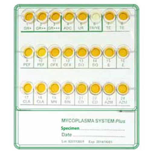 MYCOPLASMA SYSTEM PLUS